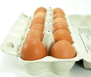 rå bruna ägg Arkivbild