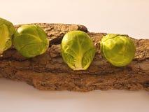 Rå Bryssel groddar - - kök Arkivbild