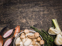 Rå champinjoner med kryddor och timjan Arkivfoton
