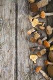 Rå champinjoner på en trätabell Edulis Boletus och kantareller Fotografering för Bildbyråer