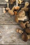 Rå champinjoner på en trätabell Edulis Boletus och kantareller Arkivfoton