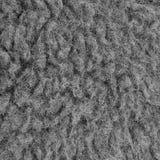 Rå Closeup för makro för ull för Merinofår, stor detaljerad Grey Textured Pattern Copy Space bakgrund, vertikala Gray Texture Stu arkivbilder