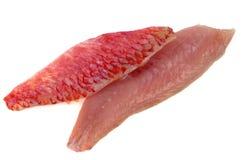 Rå filéer för röd multefiskar på en vit bakgrund arkivfoton