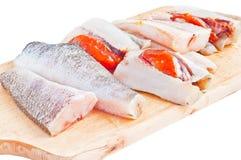 rå fisk Royaltyfria Bilder