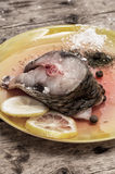 Rå fisk i citron och kryddor Royaltyfri Bild