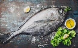 Rå fisk med nya ingredienser som är klara att laga mat Fisk citron, örter, olja Ingredienser för att laga mat på mörkt lantligt Royaltyfri Fotografi