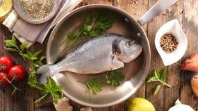 Rå fisk och ingrediens royaltyfri bild