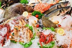 Rå fisk och skaldjur i is Royaltyfri Fotografi