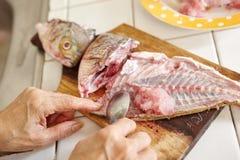 Rå fisk som är peel Royaltyfria Foton