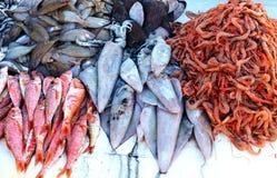 Rå fisk, tioarmade bläckfiskar och räkor på den moroccan marknaden i Essaouira Arkivbild