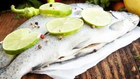 Rå forell som kryddas med limefruktskivor och pepparkorn Royaltyfri Fotografi