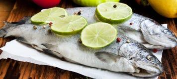 Rå forell som kryddas med limefruktskivor och pepparkorn Royaltyfria Foton