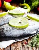 Rå forell som kryddas med limefruktskivor och pepparkorn Fotografering för Bildbyråer