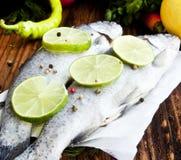 Rå forell som kryddas med limefruktskivor och pepparkorn Royaltyfria Bilder