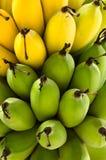 Rå gräsplan och gula mogna bananer Arkivfoton