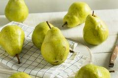 Rå gröna organiska Bartlett Pears royaltyfri bild