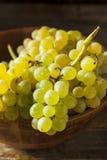 Rå gröna organiska Champagne Grapes Arkivbild