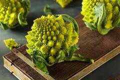Rå gröna organiska Romanesco Royaltyfri Fotografi