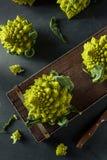 Rå gröna organiska Romanesco Royaltyfria Foton