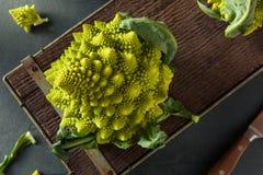 Rå gröna organiska Romanesco Fotografering för Bildbyråer