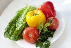 rå grönsaker Royaltyfria Bilder
