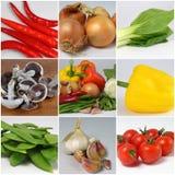 rå grönsaker för collage arkivfoto