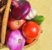 Rå grönsaker i korgen Arkivfoto