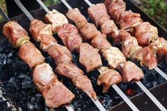 Rå grillfest Arkivbild