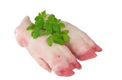 Rå grisköttben Arkivbild