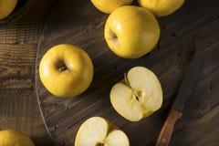 Rå gula organiska Opal Apples royaltyfri foto