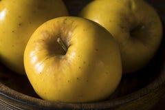 Rå gula organiska Opal Apples fotografering för bildbyråer