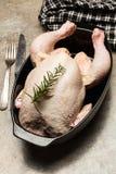Rå höna för kock Fotografering för Bildbyråer