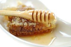 rå honung arkivbild