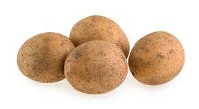 rå isolerad potatis royaltyfri bild