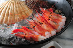 Räkasashimi Fotografering för Bildbyråer