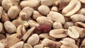 Rå jordnötter i skalet stock video