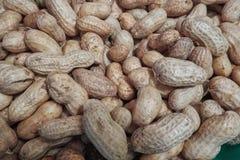 Rå jordnötter som är klara för stekhett eller kokande Arkivfoto