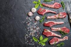 Rå lammkotletter med salt, peppar, rosmarin Royaltyfri Bild