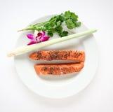rå lax för maträtt Royaltyfri Fotografi