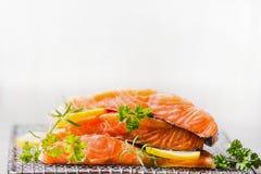 Rå lax med citronen för smaklig matlagning på ljus bakgrund arkivfoton