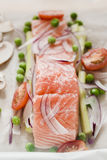 Rå laxfilé med grönsaker Arkivfoton