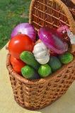 Rå mogna grönsaker i picknickkorgen Arkivbilder