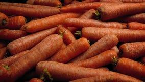 Rå morötter i hög arkivfilmer