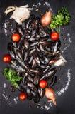 Rå musslor med tomater och kryddor på mörker kritiserar bakgrund Royaltyfria Foton