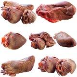 Rå nötkötthjärta som isoleras på vit Arkivbilder