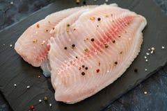 Rå ny filé av tilapiafisken med kryddor på mörk bakgrund close upp arkivbild