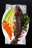 Rå ny fisk med grönsaker och kryddor Morötter och selleri Nolla Arkivfoton