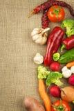 Rå nya grönsaker bantar mat som förbereder vegetarian Grönsakmeny Nya organiska grönsaker på tabellen Banta mål Arkivfoto
