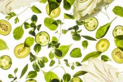 Rå nya ingredienser på vit bakgrund Fotografering för Bildbyråer