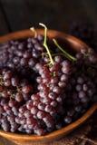 Rå organisk tabell Champagne Grapes Royaltyfria Foton